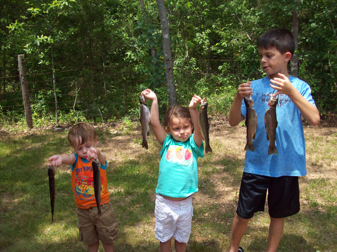 Overnight Camping Trips in and near White River Arkansas