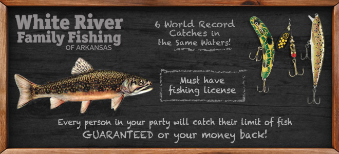 Arkansas White River Trout Fishing