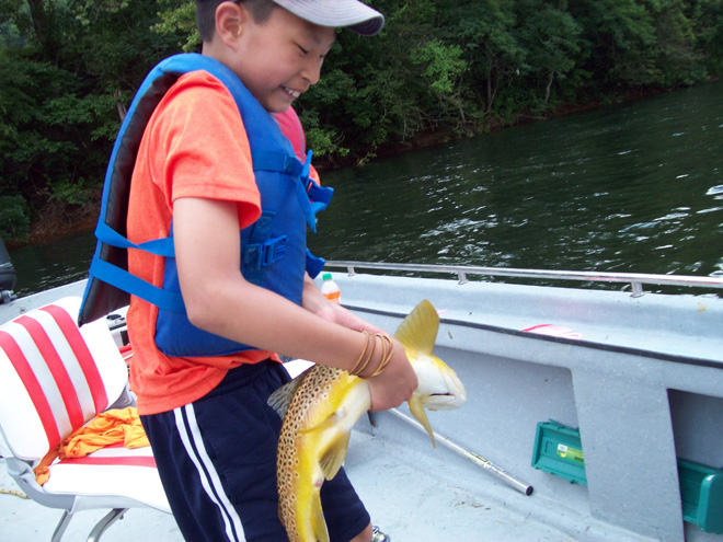 Trout Life Span in and near White River Arkansas